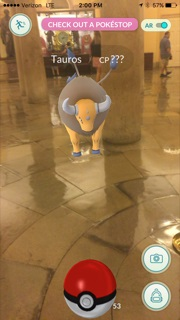 A Tauros in the rotunda. (Alex Gangitano/ CQ Roll Call)