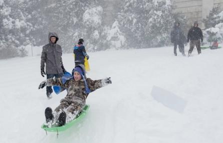 Saturday's heavy snowfall didn't deter the sledding crowds. (Bill Clark/CQ Roll Call)