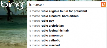 Bing Rubio search