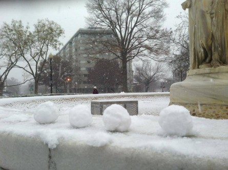 (Courtesy Washington DC Snowball Fight Association)