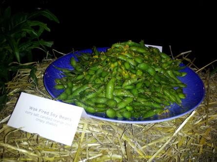 Drewno's soybeans