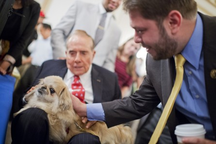 "UNITED STATES - JULY 30: Former Sen. Bob Dole, R-Kan., seated, and Rep. Ruben Gallego, D-Ariz., pet ""Milo"" during the ASPCA's Fourth Annual Paws for Celebration pet adoption event in Cannon Building, July 30, 2015. (Photo By Tom Williams/CQ Roll Call)"
