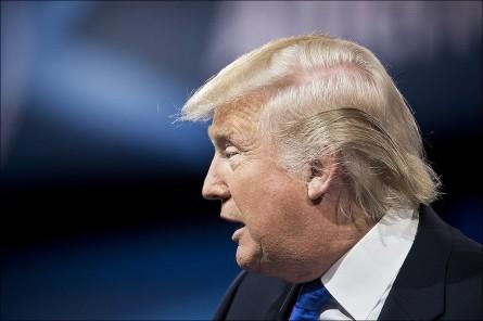 Donald Trump (Bill Clark/CQ Roll Call)